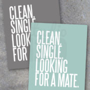 Clean Single Laundry Room Printable Decor